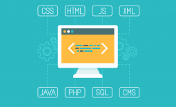 Claves para aumentar la conversión en tu web